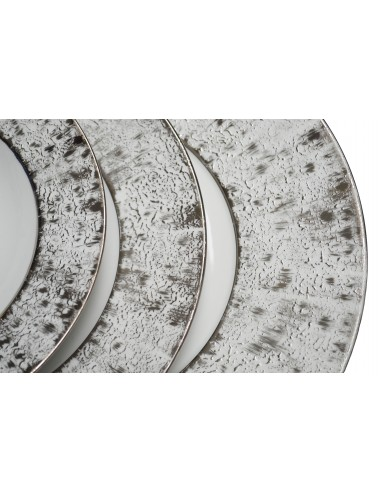Flat plate, Platinum starry collection